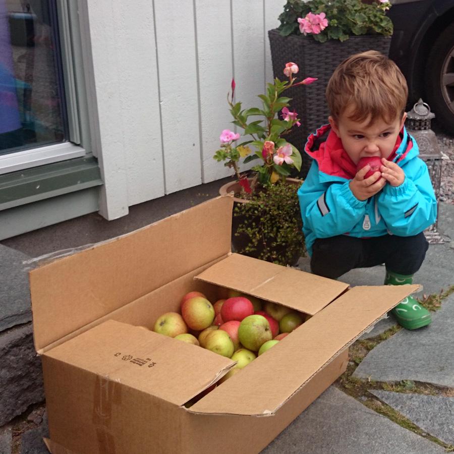 valter-applen