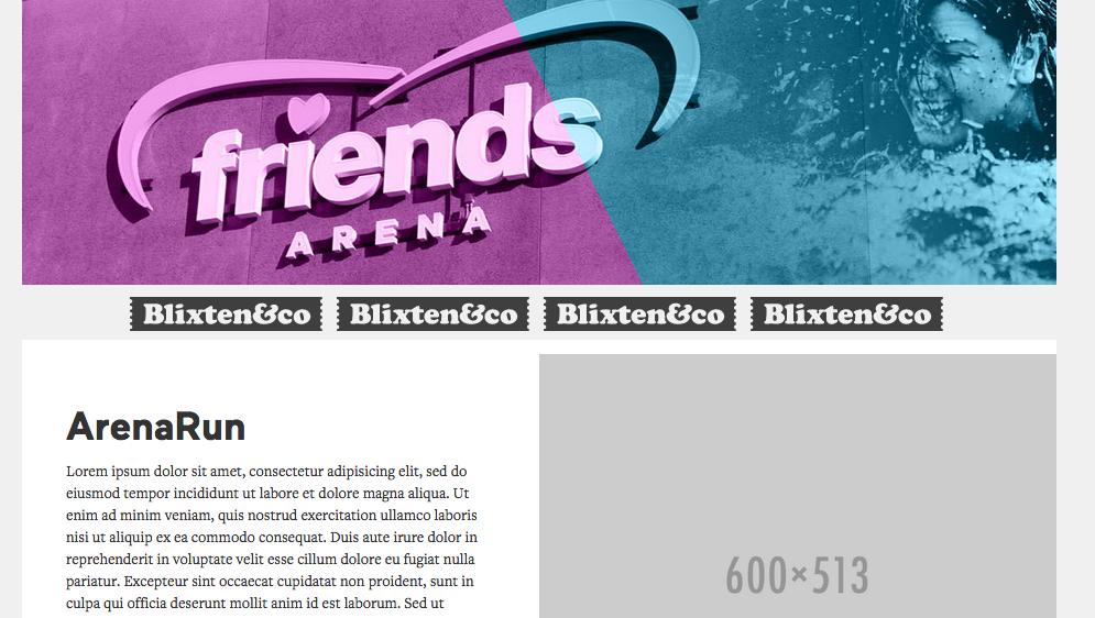 arena-run-printscreen1