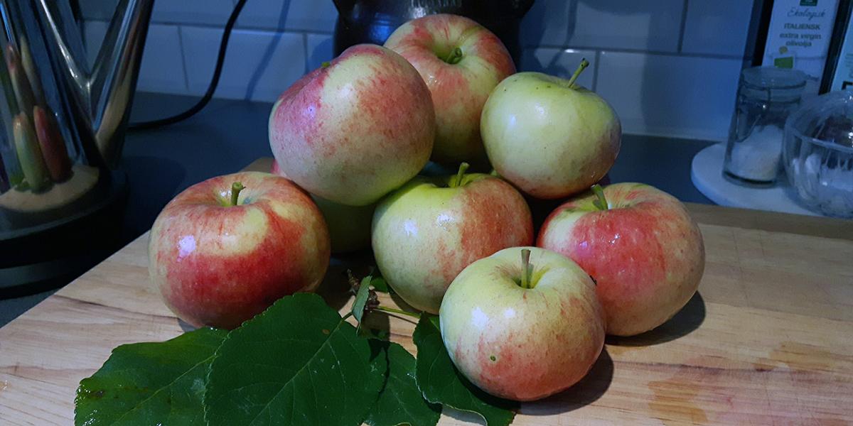 appelkram-kram-pa-applen-1